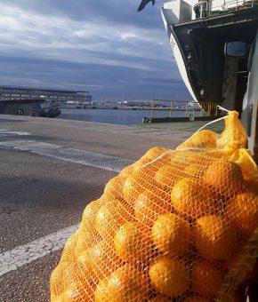 Naranče eko sa Visa