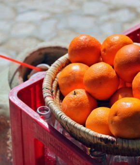 Naranče s Visa ekološke domaće