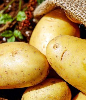 Krumpiri domaći mladi 5 kg